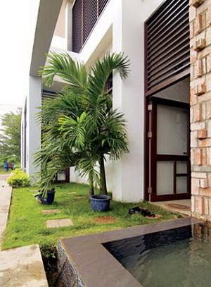Căn nhà nhiệt đới 4