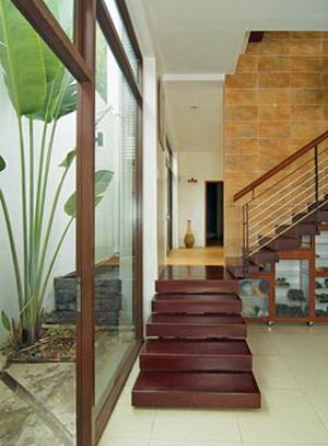 Căn nhà nhiệt đới 2