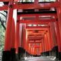 Cổng Torii và ngõ thời gian