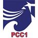 Công ty Cổ phần Xây lắp điện I - PCC1