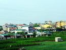 Hà Nội: Hỗ trợ hộ dân bị thu hồi trên 30% diện tích sản xuất nông nghiệp