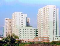 Nhà đầu tư Việt chiếm lĩnh thị trường bất động sản?