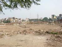 Xây dựng 1.040 căn hộ chung cư tại khu tái định cư 50ha Cát Lái