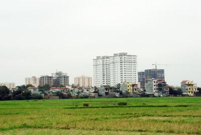 Giá đất Nhà nước quy định chỉ bằng 30 - 60% giá đất chuyển nhượng thực tế