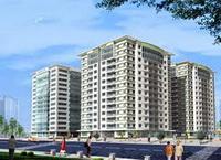 TPHCM: Cơ bản bán xong nhà theo NĐ 61/CP