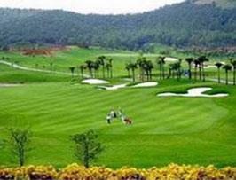 Quản lý quy hoạch sân golf, không sử dụng lãng phí đất nông nghiệp