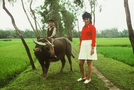 Những hình ảnh miền Bắc 'đẹp mộc' trước 1975
