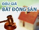 Thông báo bán đấu giá quyền sử dụng đất trồng cây tại xã Bà Điểm, Hóc Môn