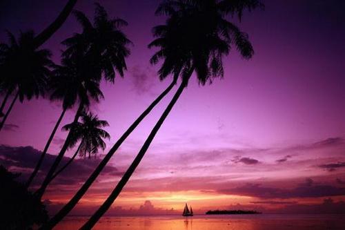 Sunset Sanato: Thiên đường của thiên đường ấy?