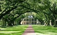 Những 'thiên đường' rợp bóng cây trên thế giới