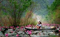 Cảnh đẹp làng quê Việt Nam