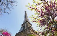 Thủ đô Paris lãng mạn vào Xuân
