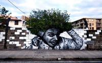 """Khi street-art """"tác hợp"""" với tự nhiên"""