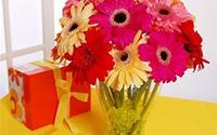 5 loại hoa ý nghĩa bạn nên bày trong dịp Tết