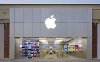 Bí mật thành công của Apple: Thận trọng và biết chờ đợi