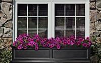 Hướng mở cửa sổ có làm thuận lợi đường công danh?