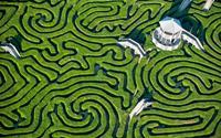 Longleat Hedge: Mê cung dài nhất Thế giới
