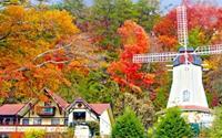"""Loạt ảnh """"mùa lá rụng"""" tuyệt đẹp trên khắp trái đất"""