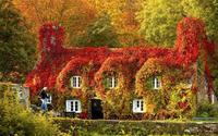Ngất ngây với chùm ảnh thiên nhiên tuyệt đẹp khi mùa thu đến