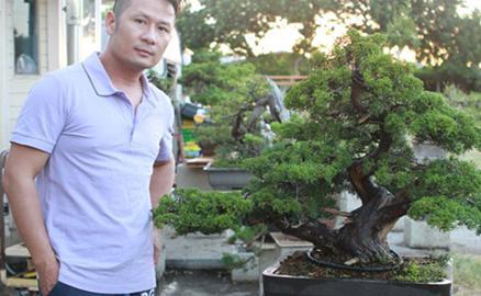 Vườn bonsai tiền tỷ ở Mỹ của Bằng Kiều