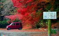 Đẹp diệu kỳ mùa lá đỏ miền Nam Nhật Bản