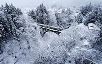 Đắm mình trong thế giới tuyết trắng ngày đông