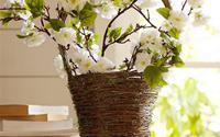 """""""Hô biến"""" ngôi nhà thành góc vườn xinh với 7 chiêu đơn giản"""