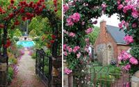 Nhà phủ hoa hồng siêu đẹp