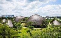 Những mái nhà lá khổng lồ bên sông Sài Gòn