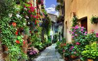 Những căn nhà tuyệt đẹp ở các ngôi làng được phủ đầy hoa khắp lối đi