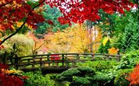 Mùa thu đến khắp thế giới