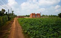 Ngôi nhà 500 triệu giữa vùng quê Đồng Nai khiến nhiều người mơ ước