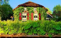 Khách Việt ngẩn ngơ trước ngôi làng cổ tích đẹp nhất thế giới