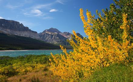 10 nơi ngắm lá thu đẹp mê hồn ở Mỹ