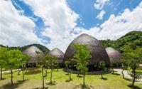 Ngỡ ngàng nhà tranh khổng lồ như khóm nấm tuyệt đẹp giữa núi rừng Sơn La