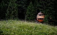Nhà hình quả thông nằm giữa rừng cho người thích ngắm sao