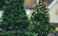 Những khu chợ Giáng sinh nổi tiếng ở Anh, nếu không ghé qua sẽ cực kỳ hối tiếc