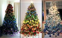 Độc đáo những cây thông Noel cầu vồng ombre