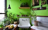 Những căn bếp màu xanh đẹp mê hoặc dành cho những ai muốn sống gần thiên nhiên