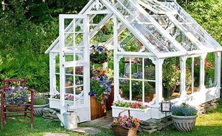Tận dụng vật liệu cũ tạo nhà kính, điểm nhấn xanh đẹp hút mắt trong vườn