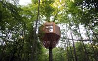 Nhà 23 m2 giống tổ chim trên cây