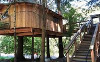 Thăm quan nhà cây Microsoft xây riêng cho nhân viên nghỉ dưỡng