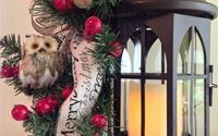 """Bật mí món đồ trang trí Noel mới toanh mang tên """"đèn lồng"""": Đa dạng phong cách giúp ngôi nhà đẹp lung linh"""