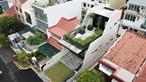 """Nhà """"ruộng bậc thang"""" xây 7 năm mới xong gây xôn xao trong giới kiến trúc"""