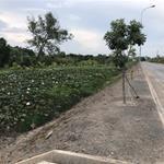 Đất thổ cư SHR tiện mua bán đầu tư, xây ở kinh doanh phòng trọ đường Trần Văn Gìau