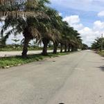 Chính chủ cần bán lô đất G2-57 đường Số 9 KDC Tân Đô
