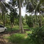 Cần bán đất vườn tại Tiền Giang