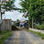 Cần bán đất vườn 5000 m2 tại đường Nguyễn Bình , Nhơn Đức
