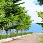 Mở bán đất nền biệt thự mặt tiền biển Mũi Né vị trí đẹp và giá cạnh tranh nhất khu vực