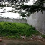 Cần bán miếng đất đối diện chợ, DT 180m2, 890tr, đường 20m, Bình Chánh